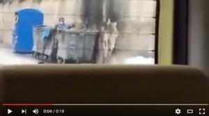 YOUTUBE Monreale: gette cane nel cassonetto ma viene ripreso