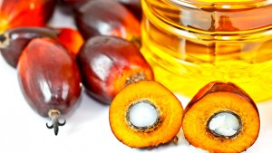 Olio di palma: supermercati lo eliminano, produttori furiosi