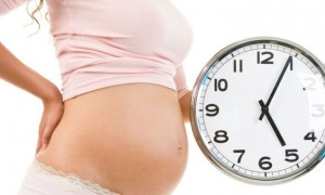 """Congedo maternità più lungo se parto prematuro: """"Inps paghi"""""""