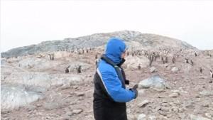 Guarda la versione ingrandita di VIDEO Tenore canta O sole mio in Antartide ma i pinguini…