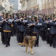 Terremoto L'Aquila, morto Pluto: addio al cane simbolo 3