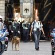 Terremoto L'Aquila, morto Pluto: addio al cane simbolo 5