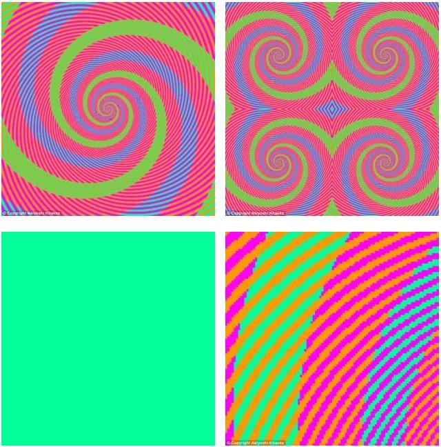 Quanti colori ci sono in questa spirale foto blitz for Quanti senatori ci sono