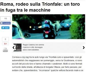 Roma, toro a passeggio su via Trionfale
