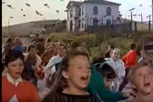 """Roma, corvi tengono condominio in """"ostaggio"""". Due feriti"""