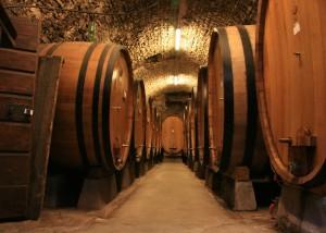 Barbera e Nebbiolo con mosto moldavo: 70mila litri sequestrati