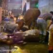 ustralia, vacche importate dal Vietnam prese a martellate