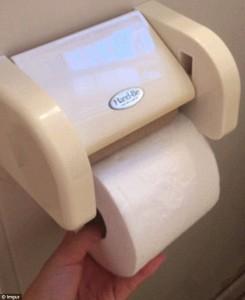 Cambiare rotolo carta igienica restando seduti sul water5