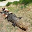 Cavalca coccodrilli davanti ai turisti 2