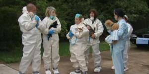 Coppia con 270 cani: casa piena di urina e pulci111