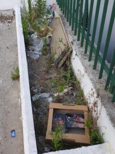 Guarda la versione ingrandita di Roma, spazzatura e degrado: come è ridotta Primavalle FOTO