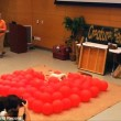 Jack Russell rompe 100 palloncini in 39 secondi2