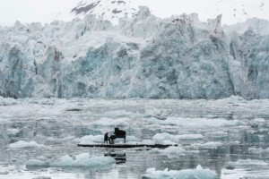 Guarda la versione ingrandita di YOUTUBE Ludovico Einaudi suona per Greenpeace fra ghiacci Artico