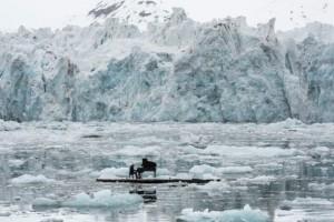 Ludovico Einaudi suona per Greenpeace fra ghiacci Artico66