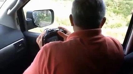 Orso apre porta auto, famiglia a bordo urla terrorizzata