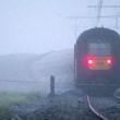 YOUTUBE Belgio, scontro tra treni: diversi morti e feriti 3