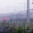 YOUTUBE Belgio, scontro tra treni: diversi morti e feriti 5