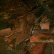 VIDEO YOUTUBE Terremoto in Nicaragua: sisma di magnitudo 6.1 5
