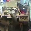 Scimmia ruba soldi dentro una gioielleria