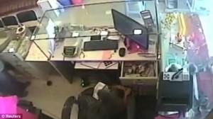 Scimmia ruba soldi dentro una gioielleria5