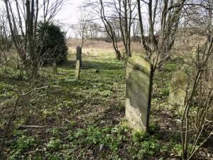 Guarda la versione ingrandita di Cercano fantasma nel cimitero, ma trovano coppia che...(Nella foto il cimitero di Hull, Wikipedia).