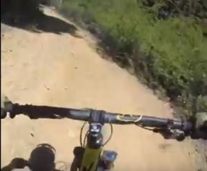 Schianto in bici con l'orso: GoPro riprende tutto