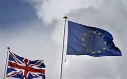 Manifestazione pro Ue
