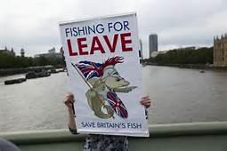 Dimostrazione pro Brexit a Londra