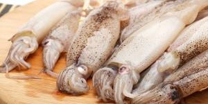 Ue avverte Italia: vietato sbiancare calamari con acqua ossigenata