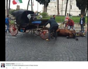 """Guarda la versione ingrandita di Roma """"botticelle"""", cavallo stramazza al suolo a Piazza Venezia FOTO"""