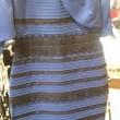 Che colore vedi? Blu o verde? Nuova illusione ottica03