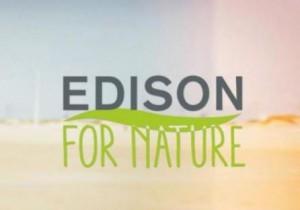 Edison for Nature: progetto cinema collettivo a firma di Mainetti e Segre