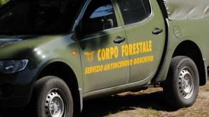Fuoco siculo: 3.500 forestali pregiudicati su 24mila