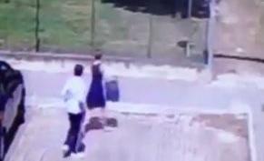 Pescara, abbandonano gatto al parco: video finisce su Fb