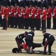 Londra, Guardia sviene per il caldo durante parata per la regina2