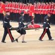 Londra, Guardia sviene per il caldo durante parata per la regina 4