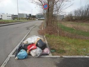 Guarda la versione ingrandita di Treviso, rifiuti abbandonati nei fossi: multe per 3mila