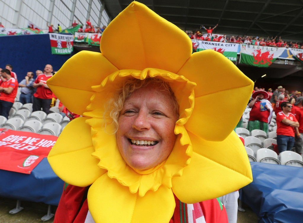 Inghilterra-Galles, FOTO tifose: spettacolo sugli spalti (Ansa)