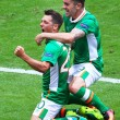 Irlanda-Svezia 1-1. Video gol highlights e foto: Hoolahan_6