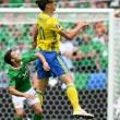 Irlanda-Svezia 1-1. Video gol highlights e foto: Hoolahan_8