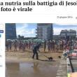 Jesolo, nutria in spiaggia tra i bagnanti FOTO