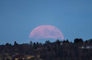 """Solstizio d'estate 2016 e Luna piena """"di fragola"""": non accadeva dal 1967"""