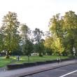 Nonna 79 anni fa sesso al parco col toy boy di 54: arrestati01