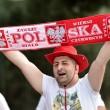 Euro 2016, Polonia-Irlanda del Nord 1-0: Milik gol decisivo