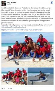 Guarda la versione ingrandita di  Squalo muore...per un selfie fuori dall'acqua