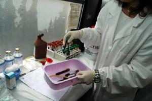 Guarda la versione ingrandita di Test del sangue aiuterà cure e farmaci anti cancro entro... (foto Ansa)