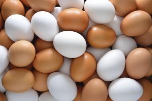 Uova in frigo o fuori? E' uguale: ecco come conservarle