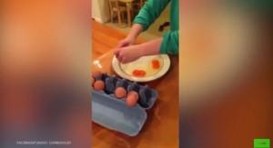 Guarda la versione ingrandita di YOUTUBE Nuova Zelanda, uova con due tuorli. Sono simbolo di...