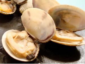 Vongole, via il divieto Ue di pescarle più piccole di 2,5 cm