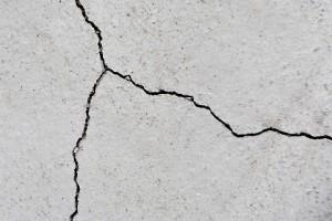 Sardegna, buco nel muro: dentro alveare gigante FOTO